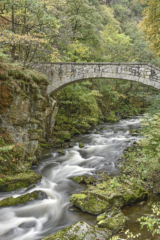 Herbst-im-Harz.jpg